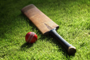 Subair Systems Cricket Bat and Ball