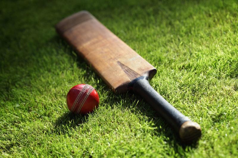 Subair Systems Cricket Bat and Ball