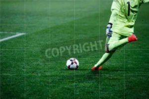 Subair Systems Soccer Grass