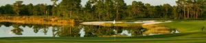 Concession Golf Club